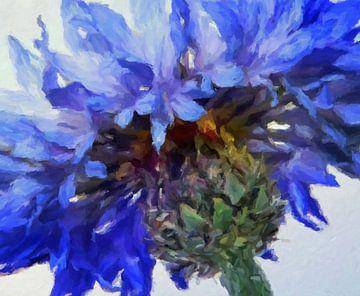 Kornblume van Marion Tenbergen