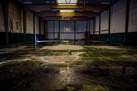 Basketbalveld van Steven Dijkshoorn