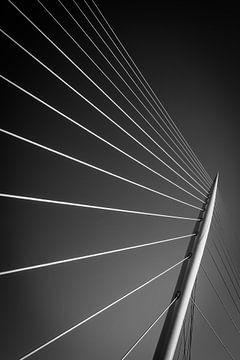 le pont à haubans sur mike van schoonderwalt