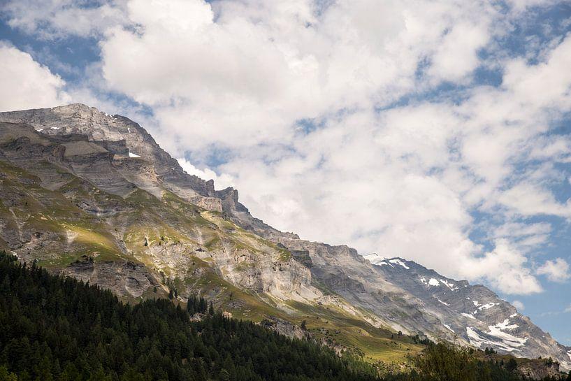 Schweizer Berge von Sander de Jong