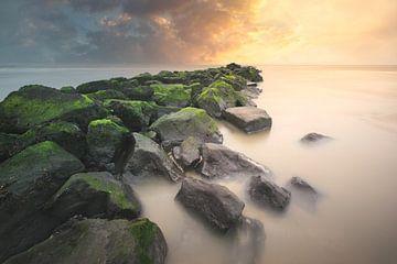 Golden sunset van Roelie Steinmann