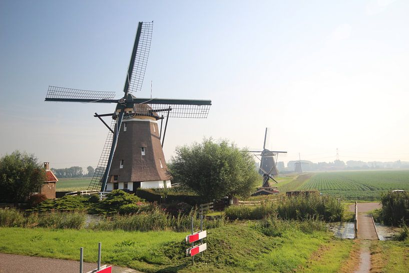 Molenviergang in Zevenhuizen von André Muller