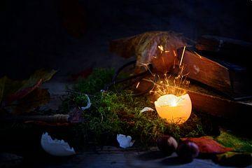 gloeiende en sprankelende eierschaal op mos met herfstbladeren en oude boeken, mysterieus halloweens van Maren Winter