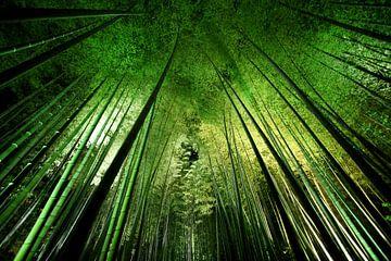 Bamboo nacht, Takeshi Marumoto van 1x