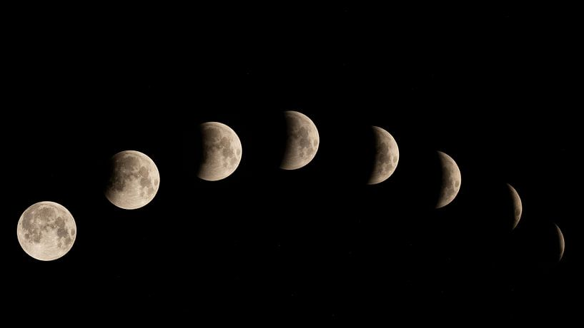 Lunar eclipse van Vincent Willems