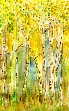Birkenwäldchen von Claudia Gründler