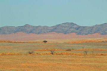 Bunte Landschaft Namibia von Marieke Funke