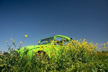 Sommerente grün von Frank Hensen