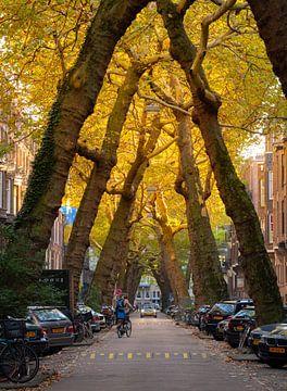 Herfst in een sfeervol historisch straatje in Amsterdam van Teun Janssen
