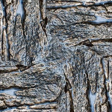 Wet rock (006) sur Jeroen van der Meij