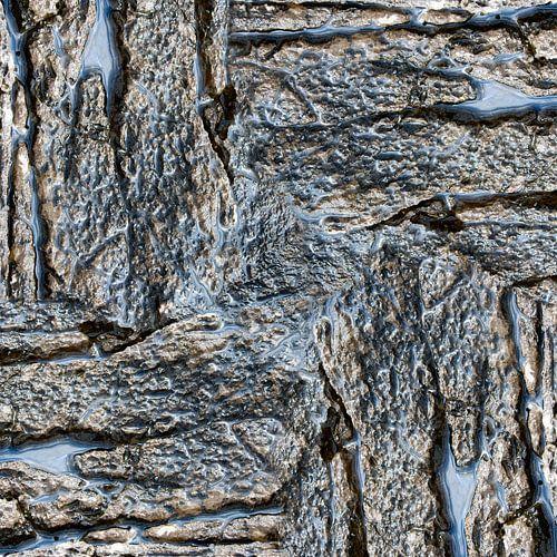 Wet rock (006) van