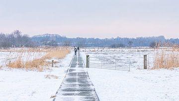 Winterlandschap IV van Diane van Veen