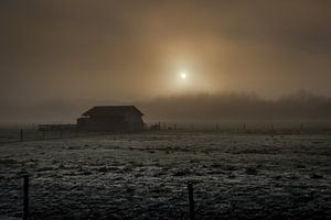 Morgenrust