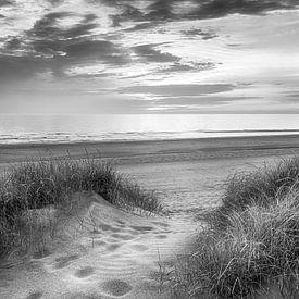 Voetstappen naar strand von Fotografie Egmond