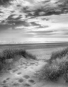 Voetstappen naar strand van Fotografie Egmond