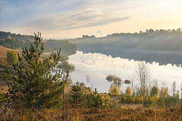 Zonsopkomst op Mechelse Heide van Johan Vanbockryck
