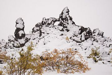 Trollenlandschap - IJsland van Barbara Brolsma