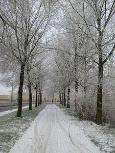 Winter in Leeuwarden von Richard Brinkman