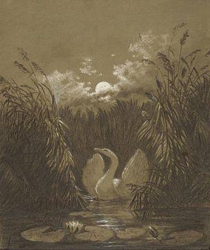 Ein Schwan im Schilf, bei Mondschein, Carl Gustav Carus