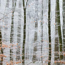 Le pays des merveilles de l'hiver sur Laura Vink