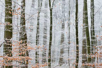 Winterwunderland von Laura Vink