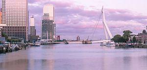Zonsopkomst Rotterdam