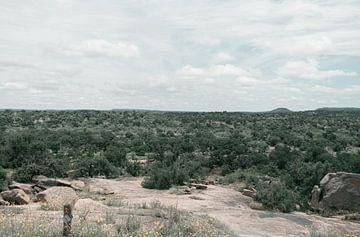 Het begin van een groen natuurgebied van By SK Photography