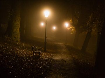 Nuit de novembre sur Tvurk Photography