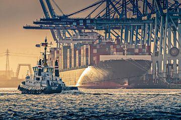 Havensleepboot in de haven van Hamburg van Ingo Boelter