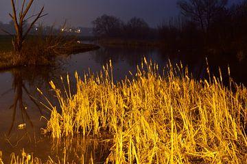 Natuur in de Nacht van Gerard de Zwaan