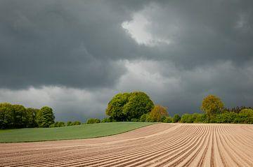 Landschap Groesbeek van Nancy van Verseveld