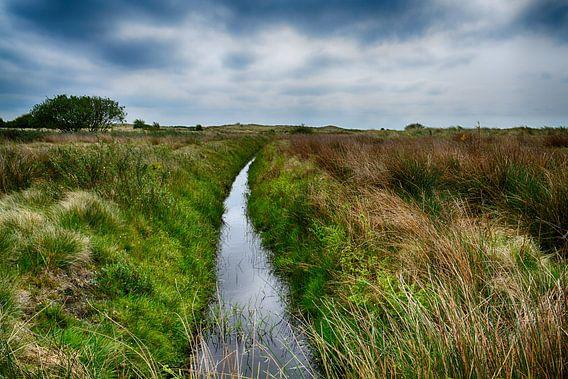 Kooiplaats op Ameland van Hanneke Duifhuize