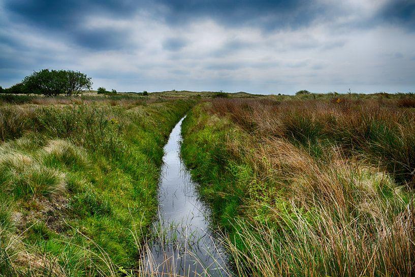 Kooiplaats op Ameland van FotoGraaG Hanneke