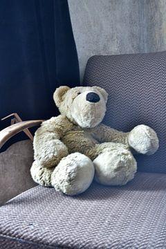 Teddybär van