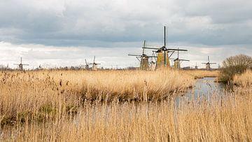 Windmühlen, holländische Landschaft, Natur von Mirjam Verbeek