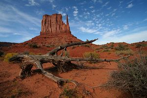 Mittens Butte - Monument Valley