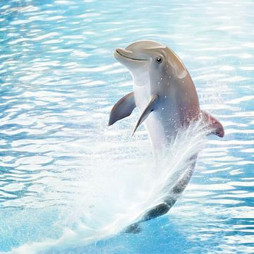 Cute Dolphin sur Silvio Schoisswohl