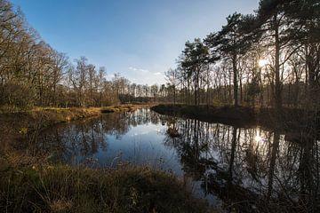 Natuurgebied het Nonnenven in de buurtschap Kotten bij Winterswijk van Tonko Oosterink