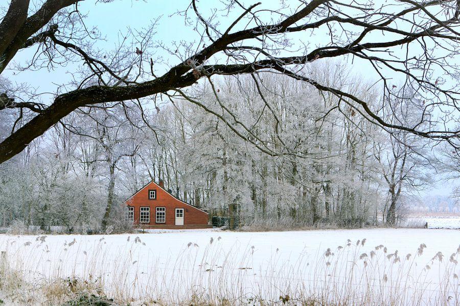 Huisje in winters landschap van Fokje Otter