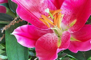 Prachtige Lelie bloem von Rijk van de Kaa