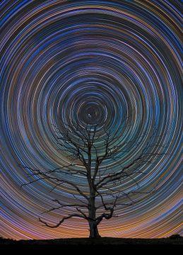 Bunter Sternenpfad auf der Posbank von Sander Grefte