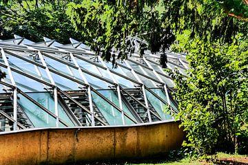 Prag - Gewächshaus im Park von Wout van den Berg
