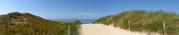 Pfad durch die Dünen, der zum Strand führt. von Sjoerd van der Wal