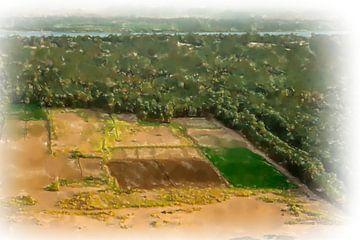 Velden en een palmbos op de Nijl, Soedan van Frank Heinz