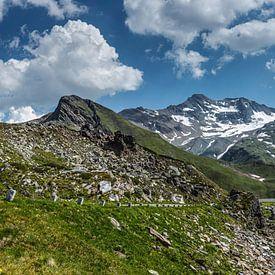 Paysage de montagne panoramique du massif du Großglockner, Hohe Tauern, Autriche sur Martin Stevens