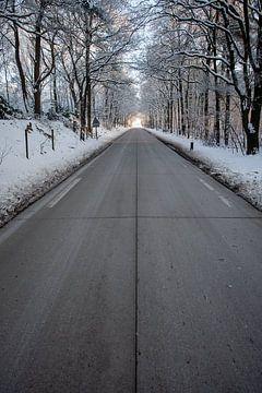 weg met licht aan het einde en sneeuw van Eric van Nieuwland