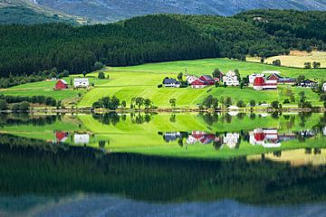 Lake with reflection van