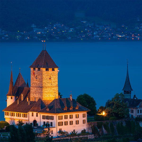 Kasteel van Spiez, Zwitserland van Henk Meijer Photography