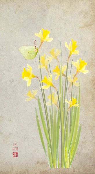 Narcissen en citroenvlinder van Fionna Bottema