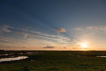Sonnenuntergang in den Oostvaardersplassen von Jurgen Corts